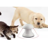 4 Time Setting Interactive Cat Exercise Toys , Double Automatic Laser Cat Toy Manufactures