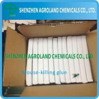 Quality Eco-Friendly Wood Mouse Glue Boards , Transparent Liquid Plastic Box Mouse Glue for sale