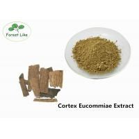 China Natural Male Enhancement Powder Cortex Eucommiae Extract 5% Chlorogenic Acid on sale