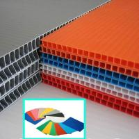 2440x1220mm 4x8 3mm 5mm PP Hollow Sheet , Corrugated Plastic Sheet Manufactures