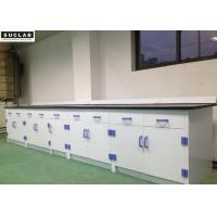 8mm Worktop Laboratory Furniture Systems , Laboratory Wall Bench PP Material Manufactures