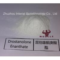 Quality Stronges Steroid Drostanolone Enanthate / Masteron Enanthate Powder For Cutting for sale