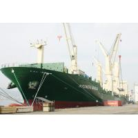 FCL Shipment to Middle East,Red Sea from Shenzhen/Foshan Manufactures