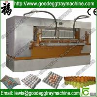 Automatic Chicken Egg Dish Making Machine Quality Egg Tray(FC-ZMG6-48) Manufactures