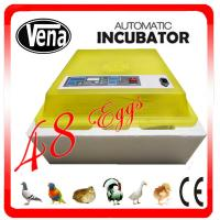 China Best price quail egg incubator VA-48 mini egg incubator for sale on sale
