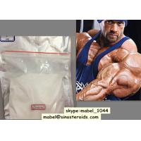 Muscle Gaining Oral Anabolic Steroids Stanozolol / Winstrol White Powder Injection Manufactures