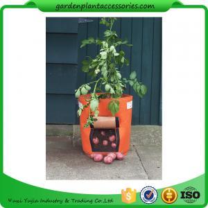 Outdoor Garden Plant Accessories , Classic Line Tequila Sunrise Fabric Planter garden bags Manufactures