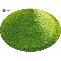 EGCG CAS 84650 60 2 Camellia Sinensis Leaf Extract In Skin Care Manufactures