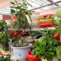 growing media durable organic greenhouse clay soil Manufactures