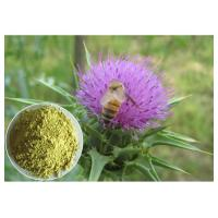 China Silymarin Herbal Plant Extract Milk Thistle Powder From Seed Light Yellow Anti - Cancer on sale