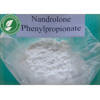 Muscle Growth Steroid Powder Nandrolone Phenylpropionate CAS 62-90-8 Manufactures