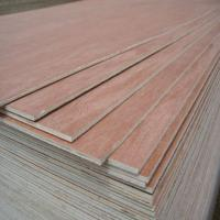 9mm bintangor plywood Manufactures