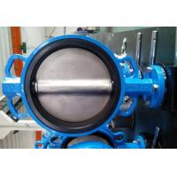 PTFE Lined Centric Butterfly Valve Self Lubricated Shaft Bear ATEX Wafer Type Butterfly Valve Manufactures