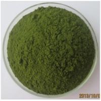 200 mesh Pure Barley Seedling Powder Barley Grass Powder For Health Food Drink Manufactures