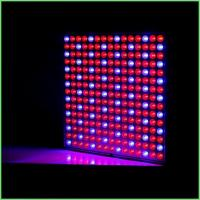 IP54 Indoor LED Grow Lights / ABS Full Spectrum Plant Grow Lights 32 W For Greenhouse Manufactures