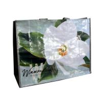 Water Proof PP Woven Shopping Bags Reusable  Folded 140gsm Shining Coated Manufactures