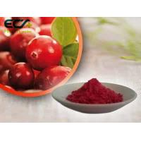 Beauty Effect Organic Food Ingredients Red Fine Oxycoccos Cranberry Extract Powder Manufactures