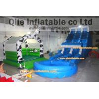 Quality long wave slide inflatable wet & dry slide with pool,pool can removed ,double wave slide for sale
