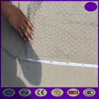 25mm ,50mm  Stainless steel Chicken wire netting , Rabbit Cage Hexagonal Wire Mesh Manufactures