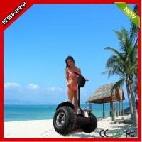 China Shenzhen high quality designable two wheels off road self balancing scooter on sale