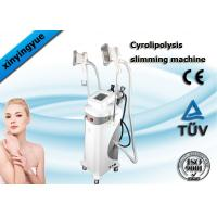 Quality Multifunction Cryolipolysis Slimming Machine , Fat Freezing Body Slimming Equipment for sale
