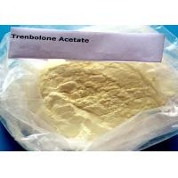 Bulking Cycle Steroids Trenbolone Acetate Tren Ace Powder CAS 10161-34-9 Manufactures