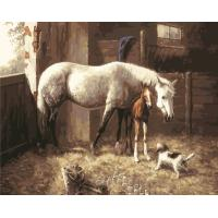 abstract horse painting running horses painting Oil Painting By Number 40x50cm Animal Manufactures