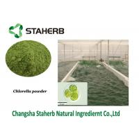 Chlorella Protein Vegetable Extract Powder Green Algae Powder Manufactures