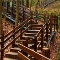 Prefinished Bamboo Deck Railing , Commercial Eco Forest Bamboo Stair Railing Manufactures