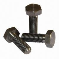 ASTM/DIN Titanium Screws, M2 to M22 Different Size, Silver Color, Good Quality Manufactures