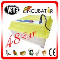 2014 Hottest Selling CE Approved Full Automatic 48 Eggs Chicken Egg Incubator For Sale Manufactures