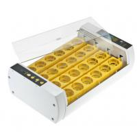 Durable Operation Simple Poultry Egg Incubator , Fully Automatic Egg Incubator Manufactures