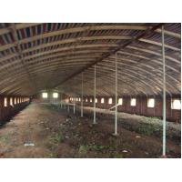 Reusable Qualified Safety And Utility Fabricated Steel Chicken Shed Systems Manufactures