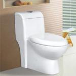 unique design bathroom ceramic water closet one-piece toilet bowl 98123 Manufactures