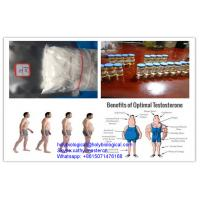 Quality Bulking Cycle Steroid Testosterone Enanthate Testosterone Sustanon 250 Sustanon for sale