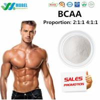 Branched Amino Acid , BCAA  Food Grade For Body building Supplements Manufactures