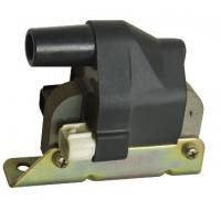 GM 88921317 Engine Electronic Ignition Module , 12V Dry High Voltage Auto Ignition Coil Manufactures