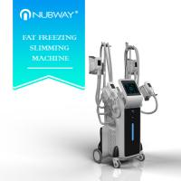 2500w big power standing cryolipolysis with 4 different size handles for whole body and double chin treatment Manufactures
