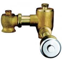 Home CE Brass Toilet Flush Valves , Self Closing Conceal Installation Flushers Manufactures