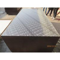 Buy cheap CROWNPLEX brand film faced plywood,poplar core.Brown film faced Plywood.18mm from wholesalers