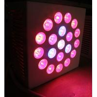 China High power SMD Health IP65 Red Led Growing Lights 2400lm with full spectrum for bonsai on sale