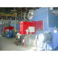 Low Pressure Horizontal Heating Thermal Gas Oil Fired Boiler , High Temperature Manufactures