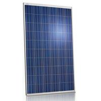 Pool 250 Watt Polycrystalline Solar Panel 36V Withstand High Wind Pressure Manufactures