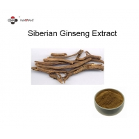 Brown Yellow Siberian Ginseng Extract , Acanthopanax Senticosus Extract Manufactures