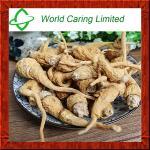 Herbal Extract Maca Extract 20:1 TLC for men sexual enhancement Manufactures
