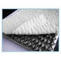 HDPE Plastic Geogrid Net with two sides geotextile,HDPE Plastic Geogrid Net with two sides geotextile Manufactures