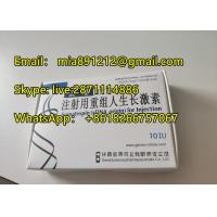 Human Growth Hormone Blue Top HGH Rentropin 100iu For Muscle Growth  Jintropin Hygetropin HCG Manufactures