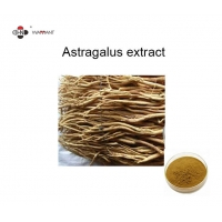 GMP Herb Extract Powder Natural Astragalus Root Extract Manufactures