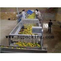 Fully Automatic Fresh Fruit Processing System/Plant Manufactures