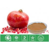 China Cosmetic Grade Natural Punica Granatum Extract Anti Oxidant / Descenting Blood Pressure on sale